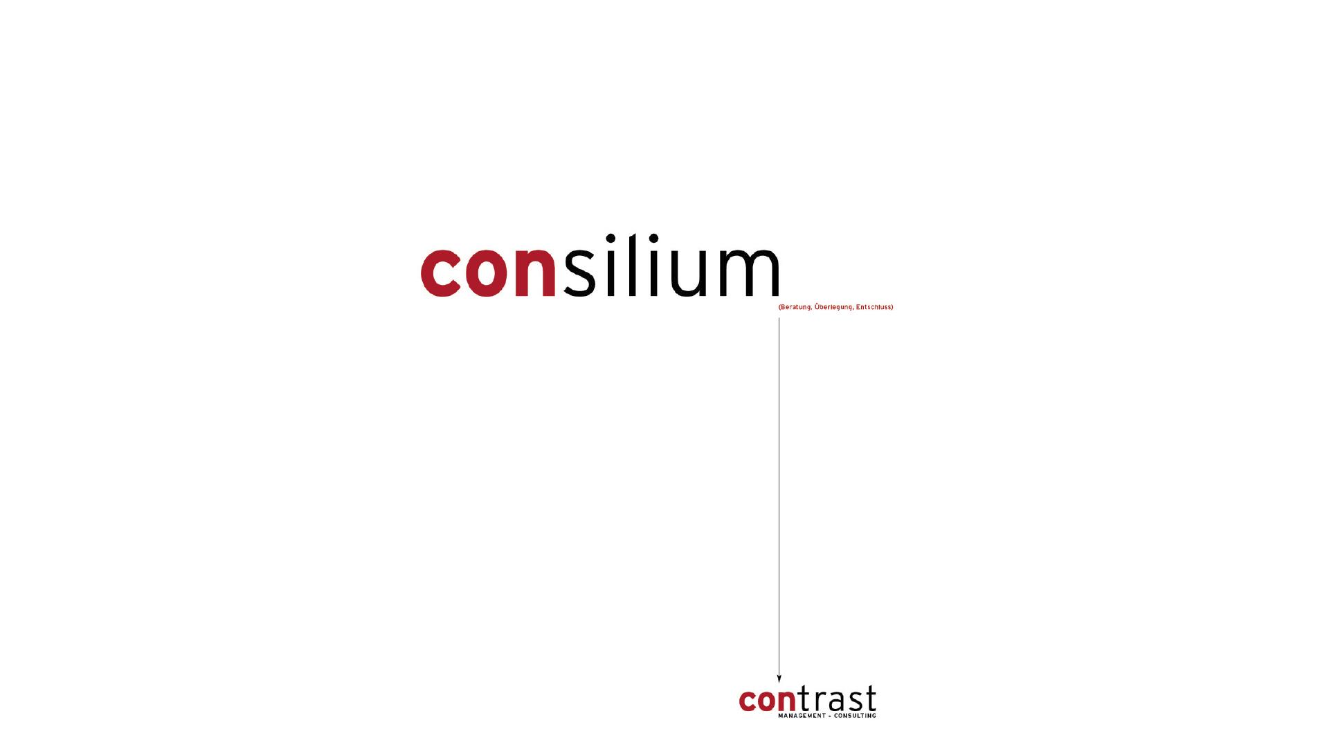 Designentwicklung für das Unternehmen. Logo, Imagebroschüre, Inserate ...